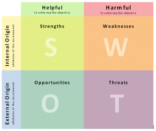 Risk SWOT analysis