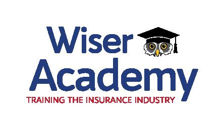 Wiser Academy logo